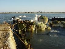 """Retirada do barco """"VERKHOVINA"""" afundado na Ria de Aveiro"""